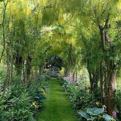 homes-gardens-of-nancy-astor-400