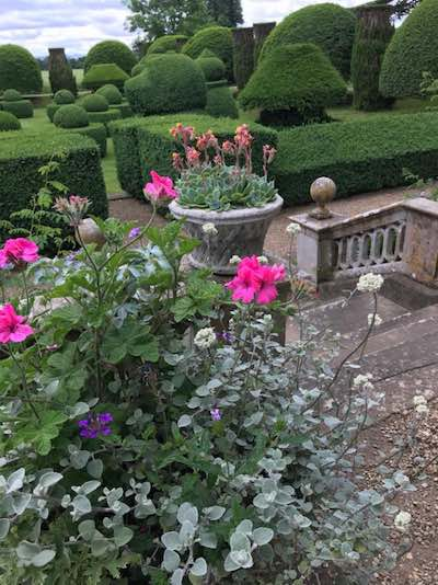 Pink Rose Garden Just Ladies Traveling